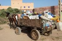 Collecteur de déchets, Sidi Bibi, Maroc