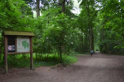 Bois de Laerbeek