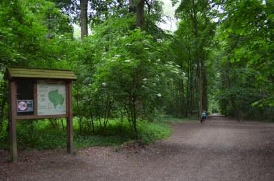 Het Laarbeekbos